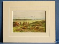 TORY ISLAND FALCARRAGH ULSTER DONEGAL IRELAND VINTAGE DOUBLE MOUNTED PRINT 10X8