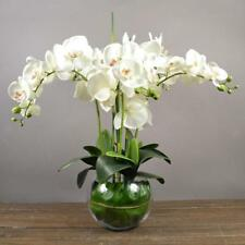 Artificial Floral 12 Head Orchid Phalaenopsis Flower Home Garden Decor White