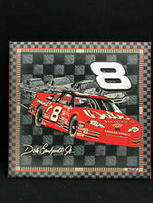 Dale Earnhardt Jr Budweiser #8 Stitched Cloth Picture Frame-Mancave Collectible