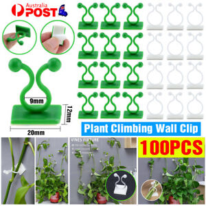 100Pcs Plant Climbing Wall Clips Self-Adhesive Invisible Plants Holder Hook Home