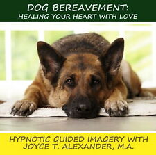 Dog Bereavement: Healing Your Heart With Love