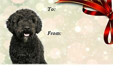 Spanish Water Dog Self Adhesive Gift Labels by Starprint