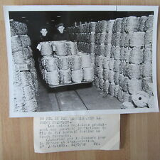 PHOTO DE PRESSE ORIGINALE 1940 ANGLETERRE FIL DE FER BARBELÉ  POUR LA FRANCE