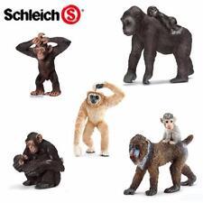 Monkeys/Apes