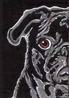 8x10 BLACK PUG Dog Pop Art PRINT of Original Acrylic Painting by VERN