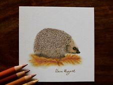 Hedgehog ~ Original Coloured Pencil Drawing ~ 3.5 x 3.5  by Claire Margaret
