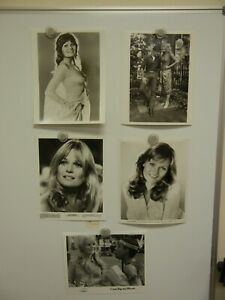 Lot of 5 Valerie Perrine Photos 8x10  MINT