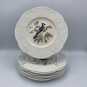 "Set of 8 Royal Cauldon Bristol Ironstone Bird Plates, England, Henry Pausch - 9"""