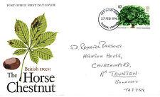 27 FEBBRAIO 1974 il cavallo CASTAGNO PO PRIMO GIORNO DI COPERTURA Taunton IED