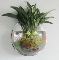 2Size Wall Mounted Fish Tank Goldfish Aquarium Hanging Pot Bowl Bubble DIY Decor