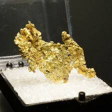 New ListingThumbnail Native Gold Collector Mineral Specimen - Oriental Mine, Ca
