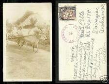 British Guiana rppc Bullock Cow Car CENSOR stamp 1943