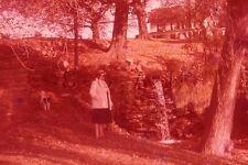 Vintage 1960s Negative / 35mm Slide- Women's Fashion- Waterfall- Mill Run- Dog