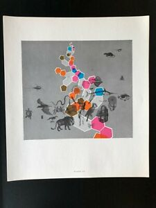 Chain of Life Lithograph 1962 Futurist Space Age Mid Century Modern Art #16