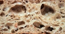 0RIGINAL WHARF SAN FRANCISC0 S0URD0UGH STARTER yeast powder dry culture mix#F