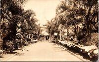 Real Photo Postcard Mission Cliffs Garden Park in San Diego, California~134132