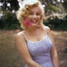 Marilyn Monroe - Marilyn holding a rose in her teeth