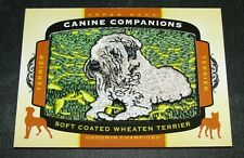 2018 Goodwin Champions Canine Companions Soft Coated Wheaten Terrier Cc135 Patch