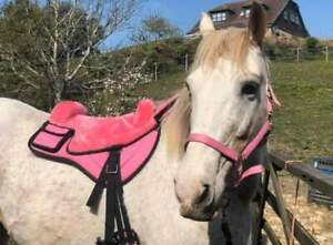 BuckYou HY.PE Pink Treeless bareback hybrid saddle pad Iberian western Vegan