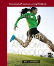 Human Anatomy and Physiology by Erin C. Amerman (2015, Paperback)