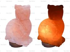 1 x OWL SHAPE ELECTRIC HIMALAYAN SALT TABLE LAMP CRYSTAL ROCK NATURAL IONIZER