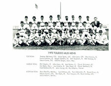 1973 TOLEDO MUD HENS 8X10 TEAM PHOTO  BASEBALL OHIO USA  CASH COMER NIEKRO