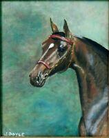 """M. JANE DOYLE SIGNED ORIGINAL ART OIL/CANVAS PAINTING """"ZBRUAT"""" (HORSE) FRAMED"""