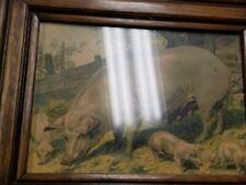 Vintage Portrait of Pig Sow Hog with Piglets Pigpen Farm Country Chic Framed