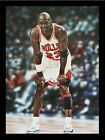 FRAMED Michael Jordan Chicago Bulls 32x24 Painting Sports Memorabilia