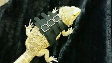 Lil' Bestie Bearded Dragon reptile Harness and Leash STRAIT JACKET