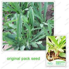 30+ Seeds Organic Green Vegetables Wild Vegetable Bitter Lettuce
