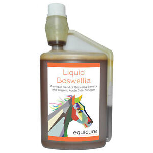 Equicure Liquid Boswellia 1L - Easy-To-Feed Natural Pain Relief For Horse / Pony