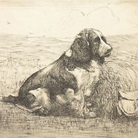 Art Deco etching Spaniel gun dog Christine McGregor signed antique vintage #3