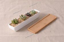 Set of Long White Ceramic Succulent Planter Miniature Flower Pots + Bamboo tray