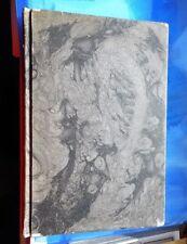 Originale antiquarische Bücher aus Asien mit Belletristik-Genre