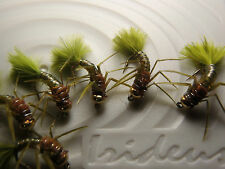 Irideus Timothy's Local Talent Leggy Stonefly Steelhead flies Trout fishing fly