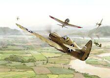 Postcard Aircraft P40 Warhawk vs Ki-43 Oscar - modern card / large