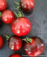 10+ INDIGO ROSE blau wunderschön glänzende halbhohe Tomate gutes Aroma Saatgut