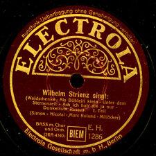 WILHELM STRIENZ -BASS- Potpourri bekannter Lieder;  Schellackplatte XXL  G3718