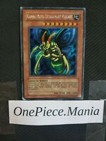 Yu-gi-oh! Grand Moth Ultimement Parfait ROD-FR001 Played