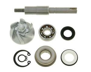 Reparatursatz Reparaturkit Wasserpumpe-Honda FES, NES, SH, SES Honda,Keeway,Tell