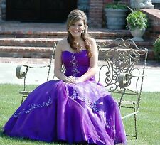 Cassandra Stone Strapless Silk Prom Dress Purple Pageant Formal Gown Size 8