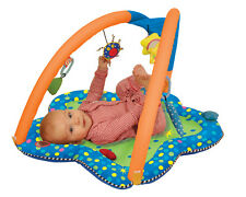 Manhattan Toy Whoozit Whoozit Tummy Time Arches Baby Playmat