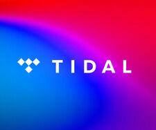 Tidal HiFI (6 mesi)