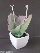 Mini Artificial Flower Plant Fake Floral Decor Summer Cactus Succulent