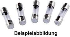 20 x Sicherungen 5x20 1 Ampere T Glassicherung Fuse lose 5 x 20 mm 1A T = Träge