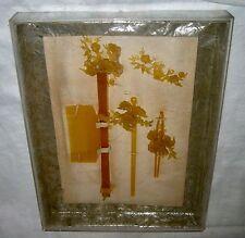 Antique Amber Lucite Bakelite Hair Embellishments ~ Sticks Comb In Original Box