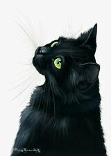 Black Cat Emerals Eyes by I Garmashova