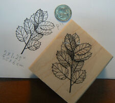 "P11 floral rubber stamp WM 1.5x2.2"" -Leaves"