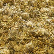 Arnica fiori Arnica montana erba secca, Tè allentato Detox 50g
